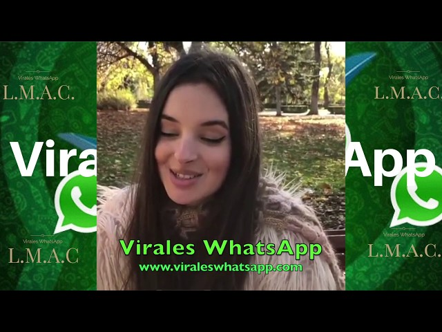 AMOR PORQUE ESTAS TAN PRECIOSO COMPILADO Ń31:Virales WhatsApp:2019