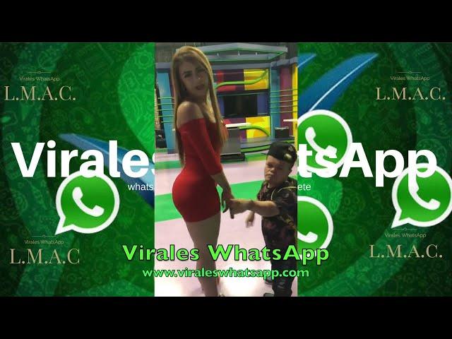 COMPILADO Ń10:Virales WhatsApp:2019