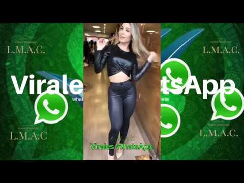 COMPILADO Ń113:Virales WhatsApp:2018