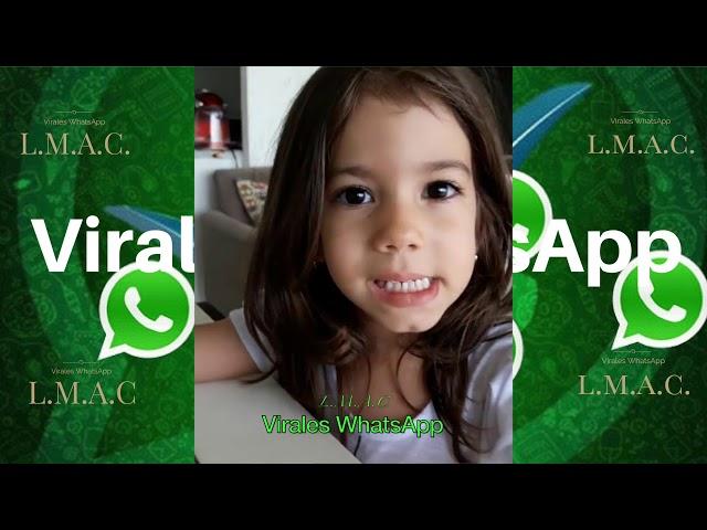 COMPILADO Ń126:Virales WhatsApp:2018