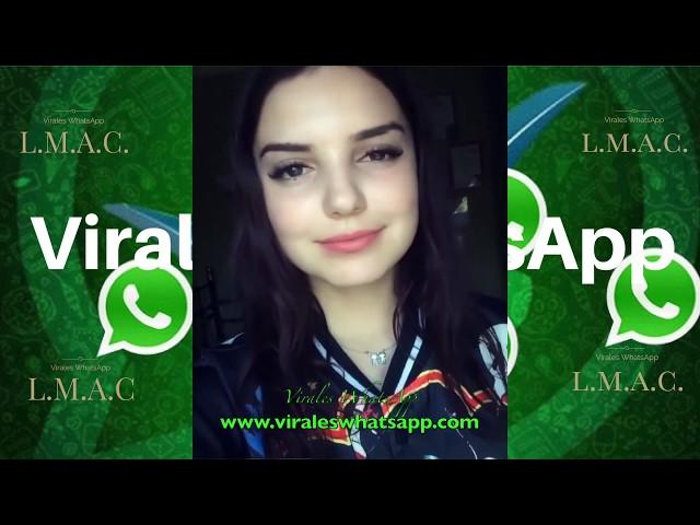 COMPILADO Ń135:Virales WhatsApp:2018