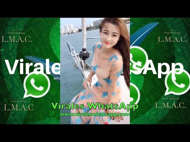 COMPILADO Ń13:Virales WhatsApp:2019