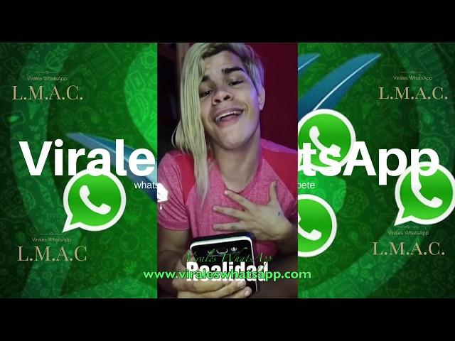 COMPILADO Ń151:Virales WhatsApp:2018