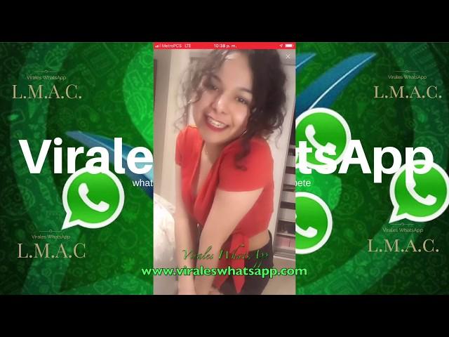 COMPILADO Ń156:Virales WhatsApp:2018