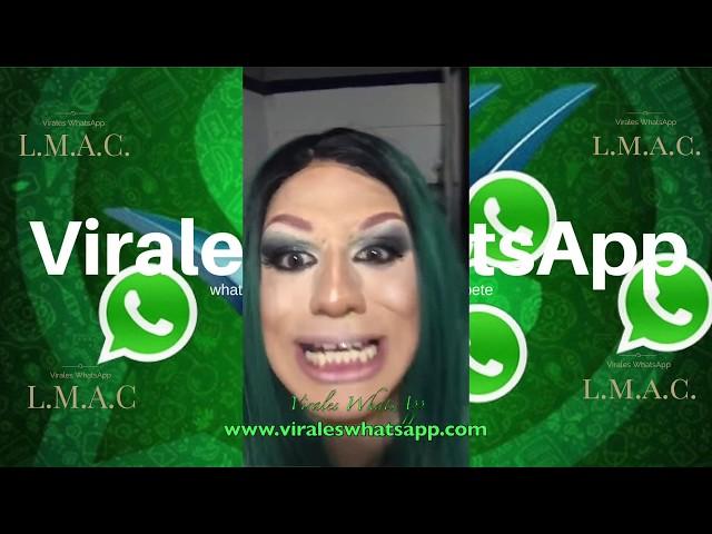 COMPILADO Ń157:Virales WhatsApp:2018