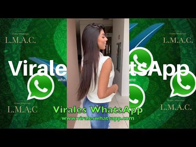 COMPILADO Ń15:Virales WhatsApp:2019
