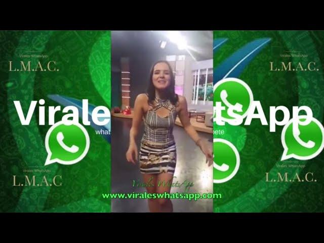 COMPILADO Ń162:Virales WhatsApp:2018