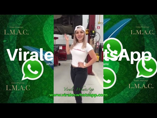 COMPILADO Ń166:Virales WhatsApp:2018