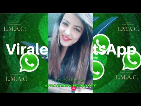 COMPILADO Ń168:Virales WhatsApp:2018