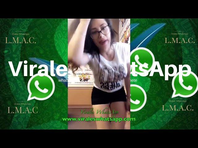 COMPILADO Ń176:Virales WhatsApp:2018