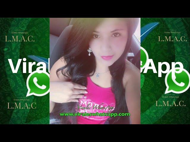 COMPILADO Ń179:Virales WhatsApp:2018