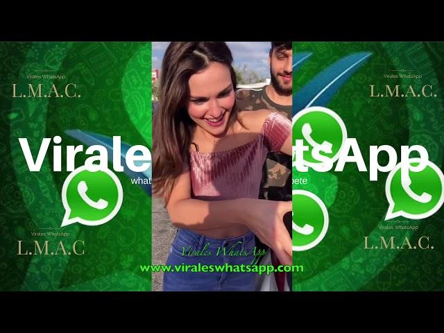 COMPILADO Ń181:Virales WhatsApp:2018