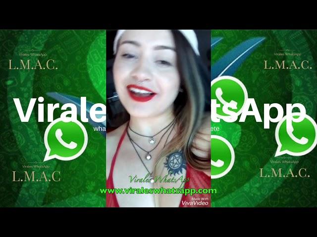 COMPILADO Ń182:Virales WhatsApp:2018