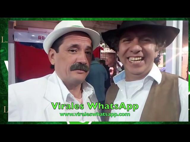 COMPILADO Ń18:Virales WhatsApp:2019