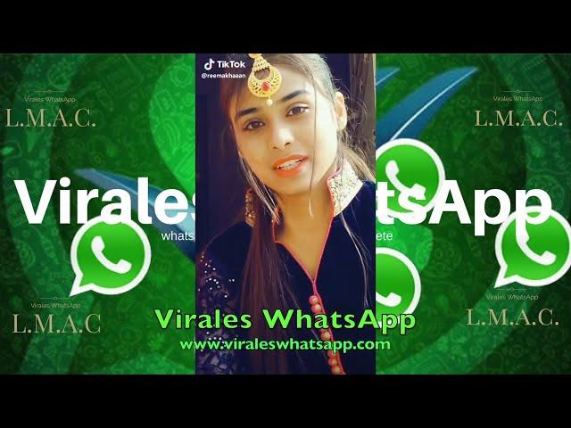 COMPILADO Ń8:Virales WhatsApp:2019