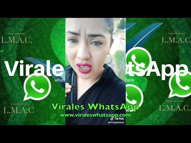 EN LA MAÑANA NO HAGO NADA Y EN LA TARDE DESCANSO COMPILADO Ń29:Virales WhatsApp:2019