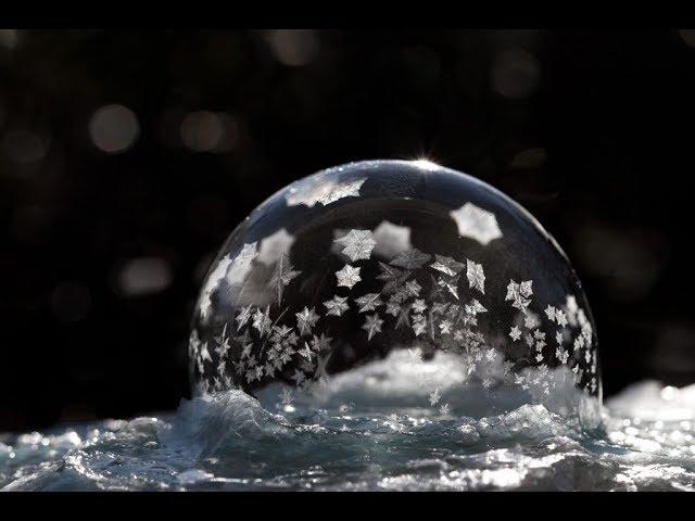 Los Vídeos más Raros del Mundo 67 / Videos Asombrosos