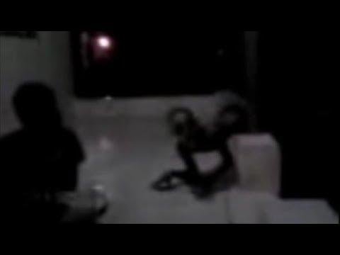 Los Vídeos más Raros del Mundo 87 / Videos Misteriosos Inexplicables de Anomalias