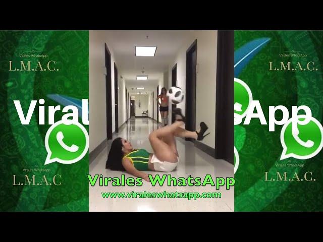 MIRA TODO EL VIDEO COMPILADO Ń21:Virales WhatsApp:2019