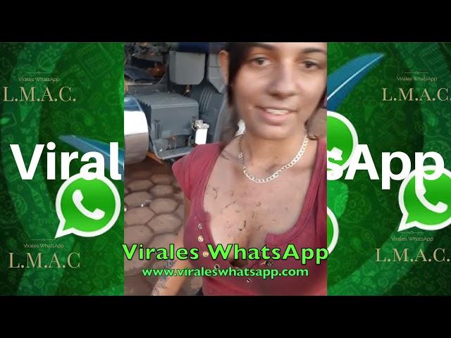 PONEME A TU NOVIA ACA QUE QUIERO DECIRLE UN PIROPO! COMPILADO Ń28:Virales WhatsApp:2019
