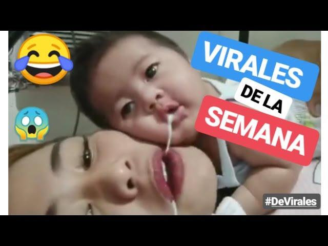 ✅ VIDEOS DE RISA 2019 🤣 virales de la semana de facebook y whatsapp – si te ries pierdes