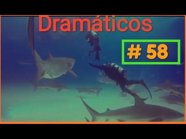 Videos Dramáticos 2018 # 58