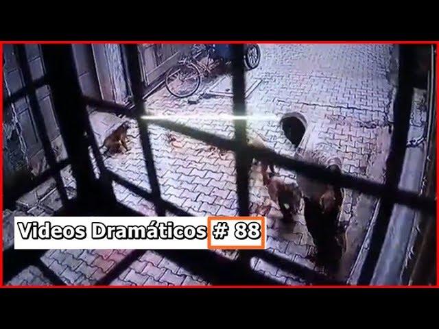 Videos Dramáticos # 88
