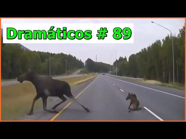 Videos Dramáticos # 89