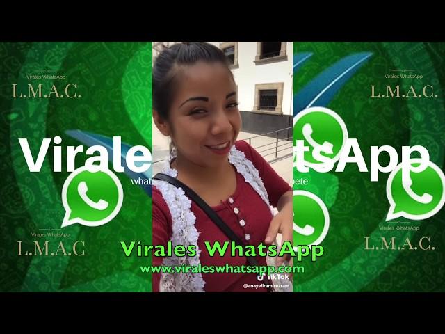 VIDEOS NUNCA VISTOS COMPILADO Ń23:Virales WhatsApp:2019