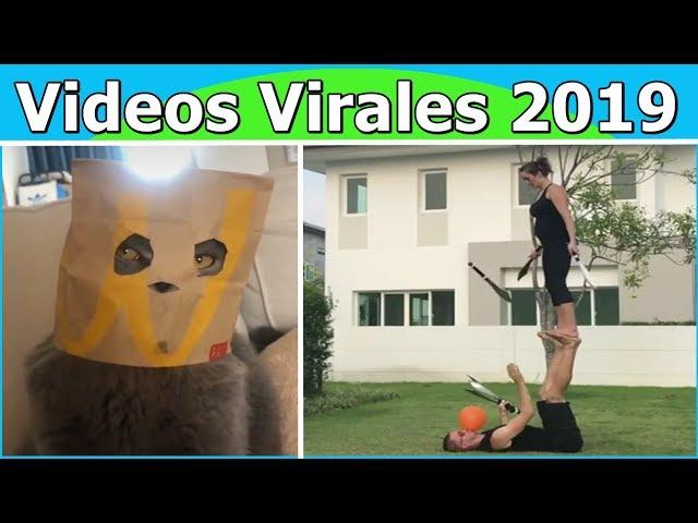 Videos Virales 2019 Agosto # 2