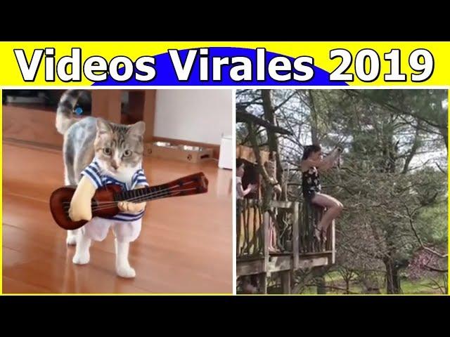 Videos Virales 2019 Septiembre # 1