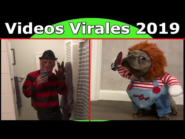 Videos Virales 2019 Septiembre # 3