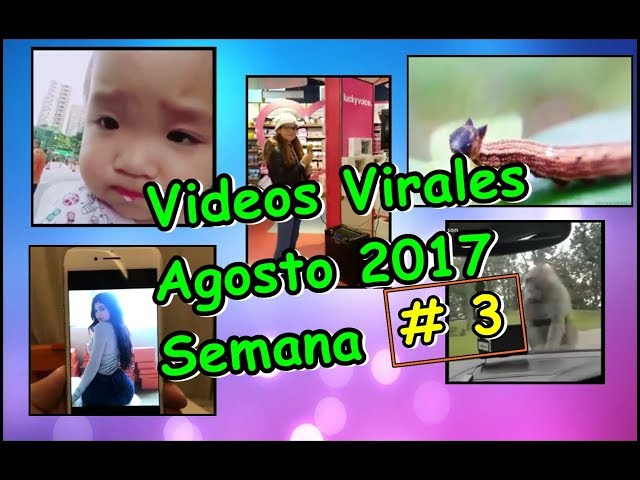 Videos Virales Agosto 2017 Semana # 3