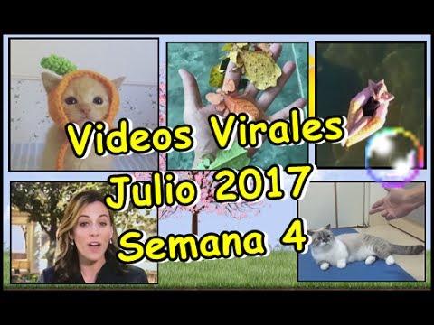 Videos Virales Julio 2017 Semana 4
