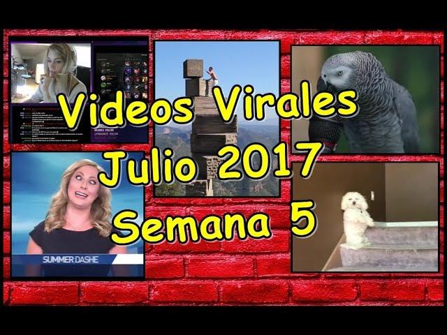 Videos Virales  Julio 2017 Semana 5