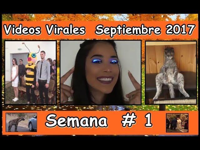 Videos Virales  Septiembre 2017 Semana 1