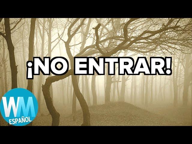 ¡Top 10 BOSQUES Más EMBRUJADOS del Mundo!