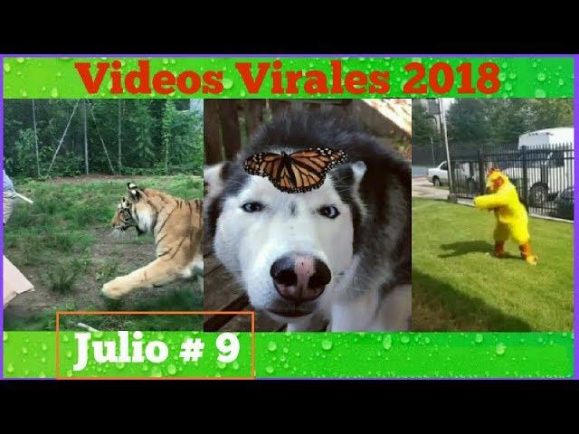 Videos Virales Julio 2018 # 9