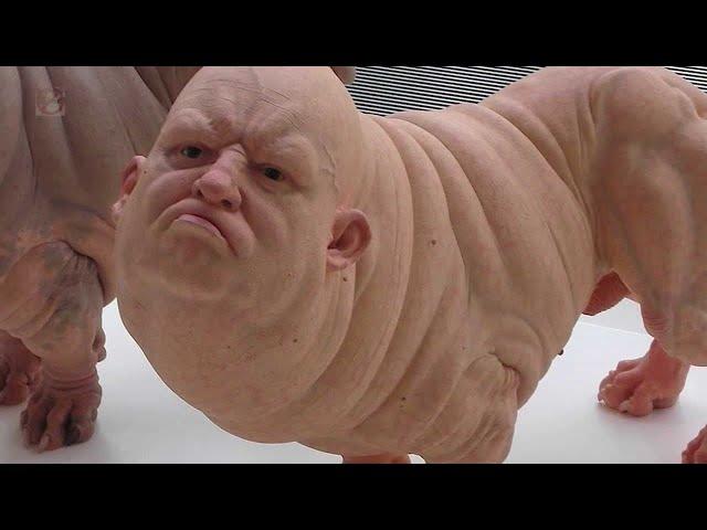 El Perro con Cara de Hombre